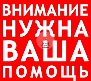 1406653561_pomosch-nuzhna
