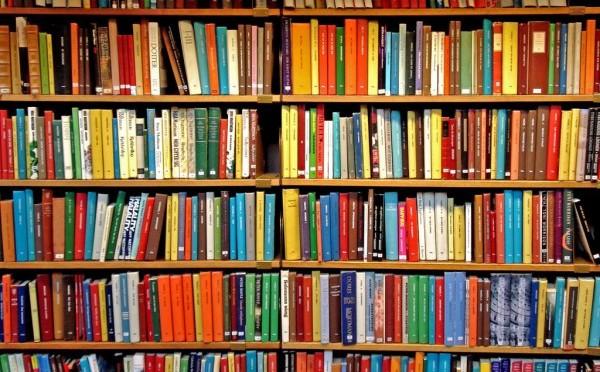 Если пылятся на полках ненужные книги—приносите